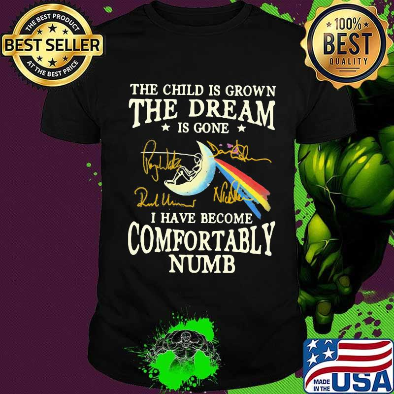 The Child is grown the dream is gone i have become comfortably numb shirt S-5XL